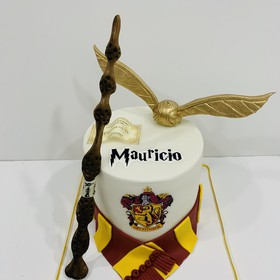 Pastel Harry Potter Griffindor